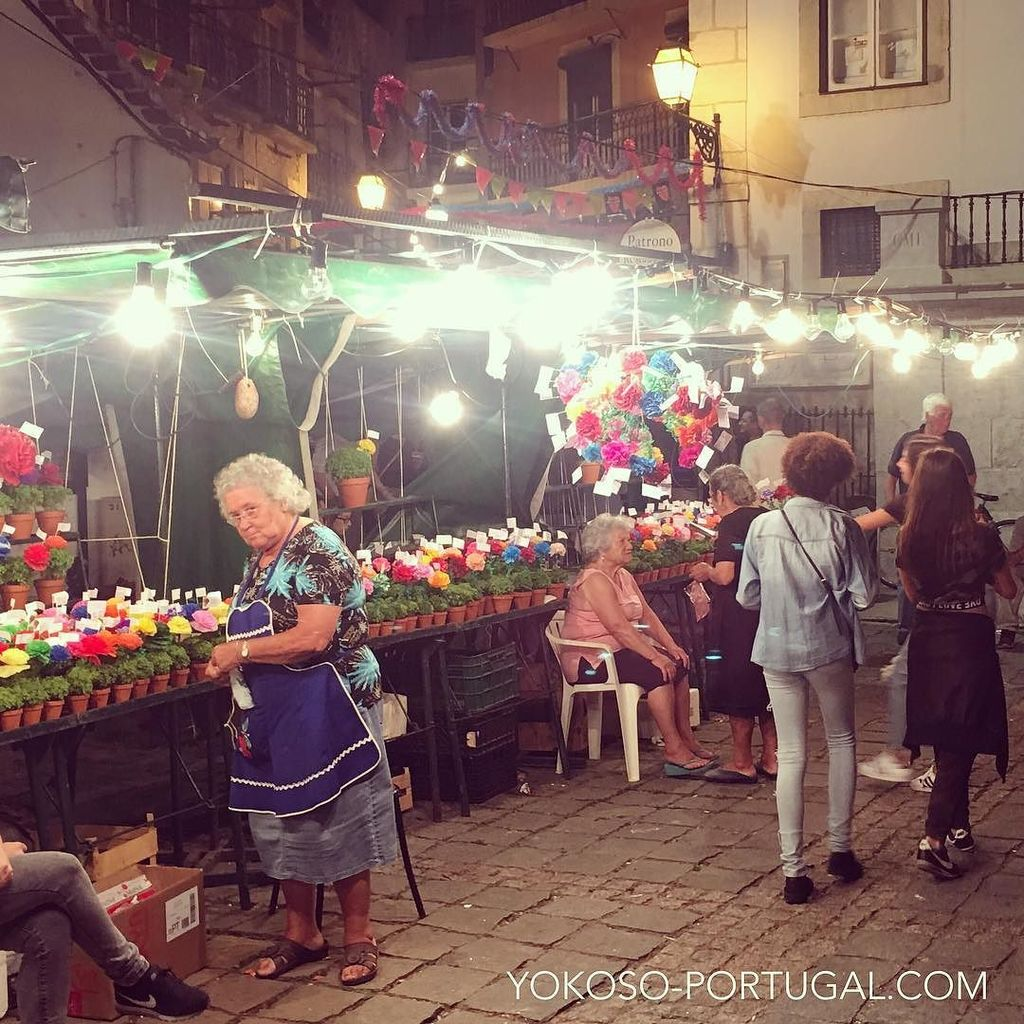 test ツイッターメディア - リスボンでは、聖アントニオ祭の日に恋人に愛を謳った詩をとともにマンジェリコ (バジルの一種) を贈ります。この時期になるとおばあちゃんたちが屋台を構え始めます。 #リスボン #ポルトガル https://t.co/RAtNCdOWpi