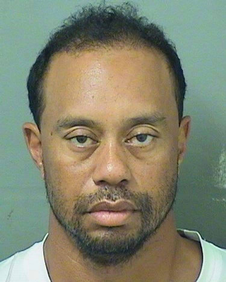 test ツイッターメディア - Tiger Woods arrested for drunk driving in Florida. A new low. Feel so sad for the man https://t.co/SGId5eKzo2