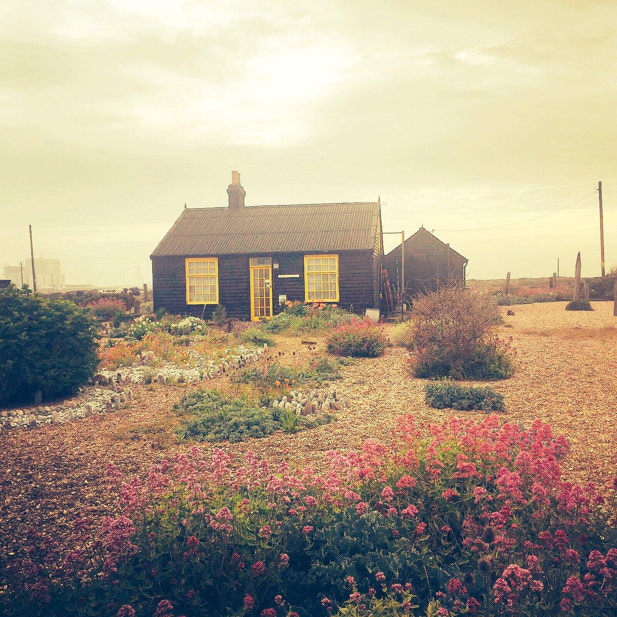 Prospect Cottage #DerekJarmanGarden #Dungeness #Kent ⚡️????????⛔️???? https://t.co/DXyBQryq2j