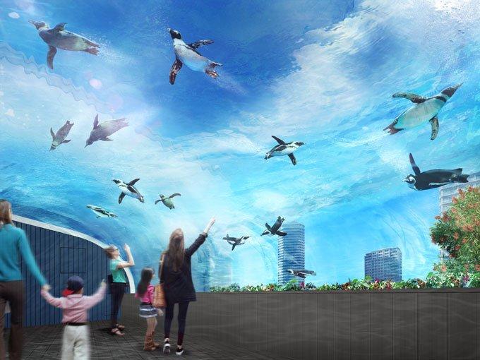 マツコでやってたサンシャイン水族館の空飛ぶペンギン、完全に東京ESPじゃないですかやだーみたい
