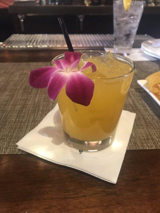 Aloha! 🌺 https://t.co/KybbuoMRUY