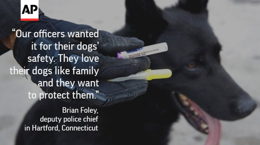Police start carrying popular overdose antidote for K-9 partners sent in to sniff out drugs.