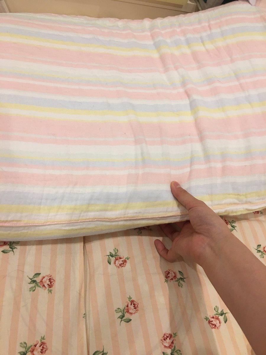 大塚家具できのうみつけた枕が最高に心地よい眠りに誘われる。。浦安鉄筋家族の春巻の枕みたい