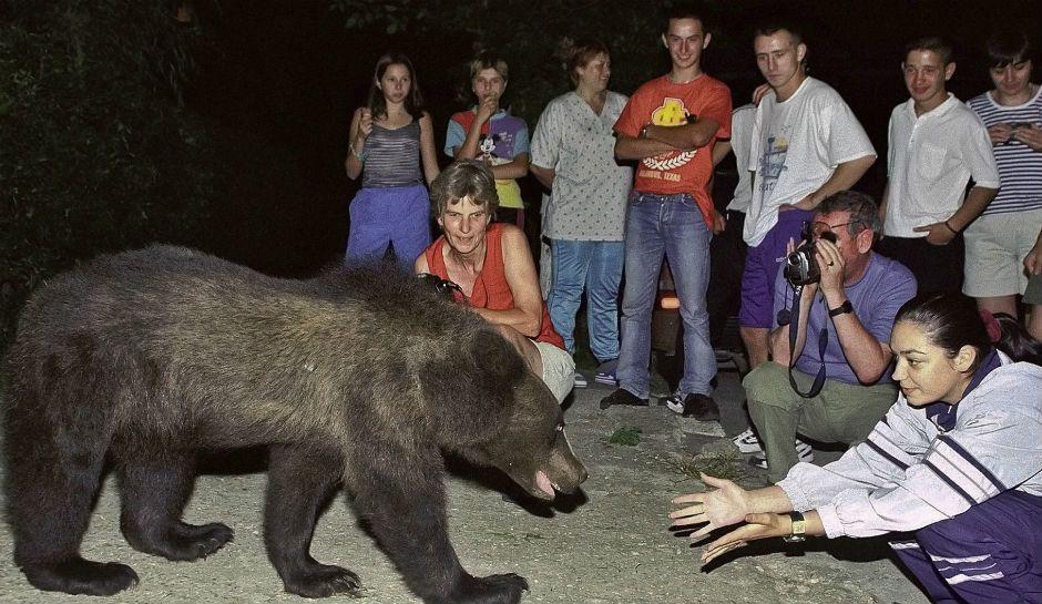Mama Bear Drives A Stake Through Romania Tourism By Blocking Visits To Dracula's Poenari Castle