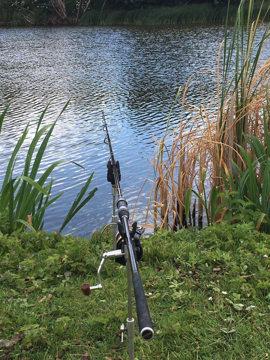 Everything ready to catch a carp. 😀👍🐟#carp #carpfishing #sport #fishing #catch #<b>Bites</b