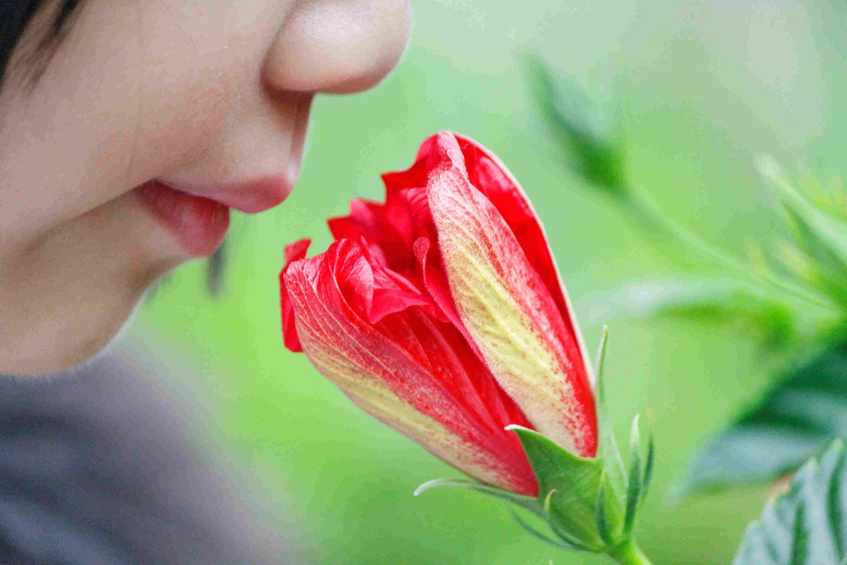 Science says you smell better than you think you do