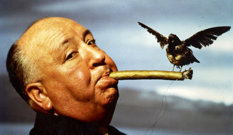 Our primary function is to create an emotion and our second job is to sustain that emotion. ALFRED HITCHCOCK  #screenwriting #writing https://t.co/ygG9PxM8ef
