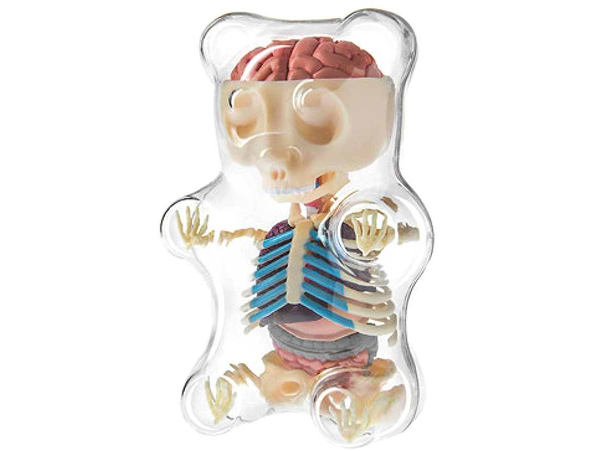 I find the weirdest things on ... 4d master gummi bear skeleton ...