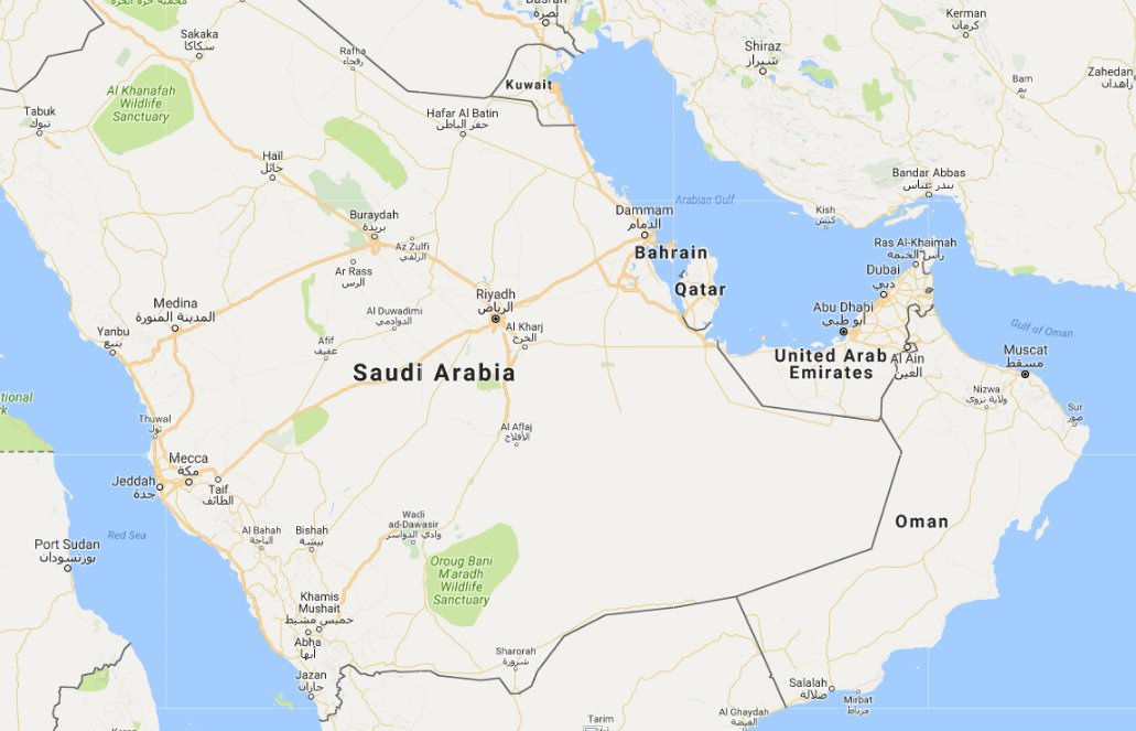 UAE supports statements of Bahrain and Saudi Arabia on Qatar