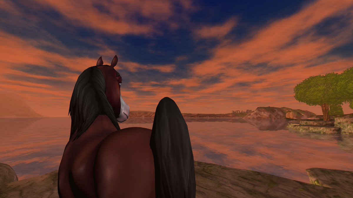 star stable gamescoops your games feed. Black Bedroom Furniture Sets. Home Design Ideas