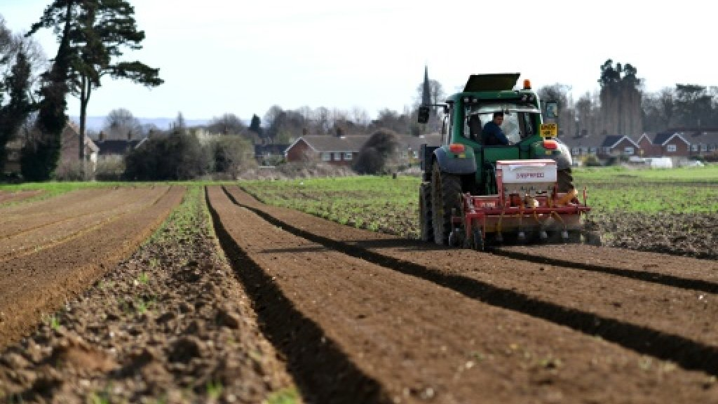 Brexit risks disrupting EU agriculture market, experts warn
