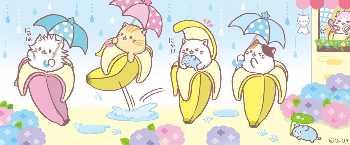 四国から関東甲信まで梅雨入りしたみたいにゃ〜!! 雨でもばなにゃ子以外のばなにゃ達は楽しそうに過ごしているよ☆ #ばなに