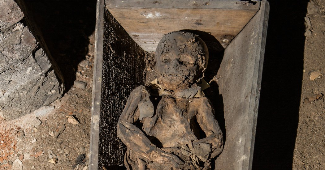 The #MummiesMedicalSecrets ? They're Perfectly Preserved https://t.co/ZQx7N6PyqB https://t.co/VwnGQHyZVp