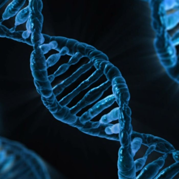 Scientists get new genome platform to decode DNA in fight against complex diseases