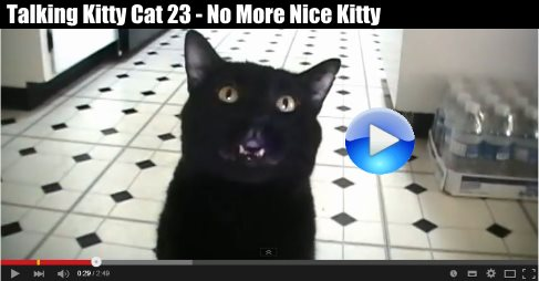 Talking Kitty Cat 23 - No More Nice Kitty https://t.co/3MrP6P495V Very Cute and Funny, Feed Me or Else! #video 8 https://t.co/tp4gWSZuZh