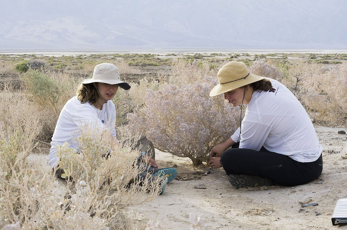 test Twitter Media - Biology Team Samples Drought-Tolerant Bacteria in Death Valley https://t.co/T6ZwbXT4sz https://t.co/avB2t3Owyf