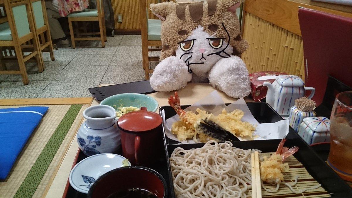 海老天が凄い!太くてプリプリだ。五十六もお貸しいただいたので記念に一枚。(食べかけで申し訳ない…)#はいふり#寿徳庵横須
