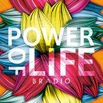 3.BRADIO - POWER OF LIFE最近のバンドの中では一線を画すようなファンキーなバンドの1st。デス・パ