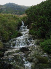 test Twitter Media - A magical waterfall! #EllenRothAuthor https://t.co/v2fwbwHiUS