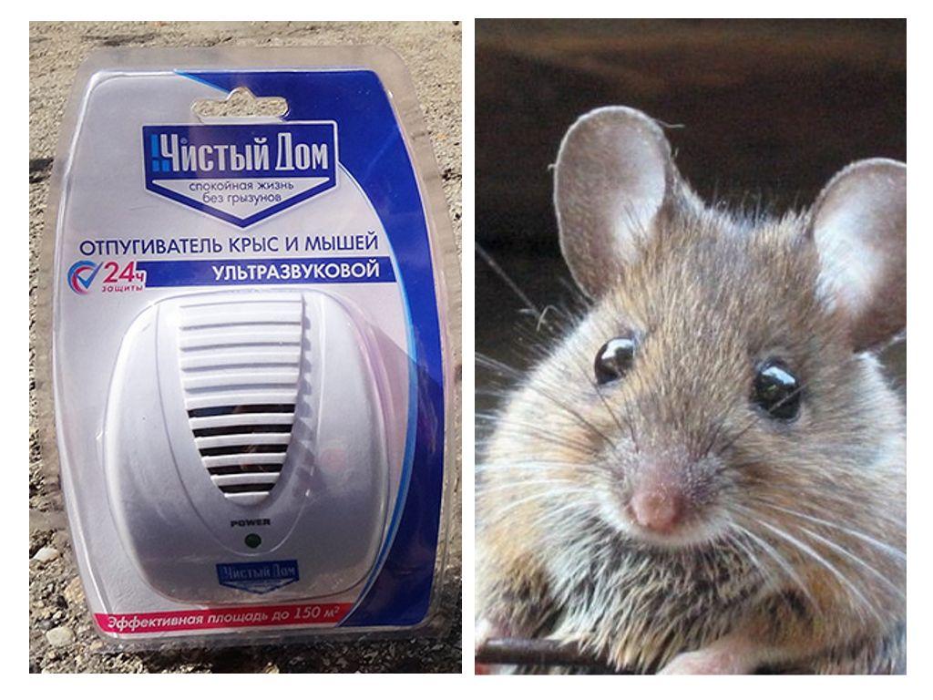 Ультразвуковой отпугиватель от мышей
