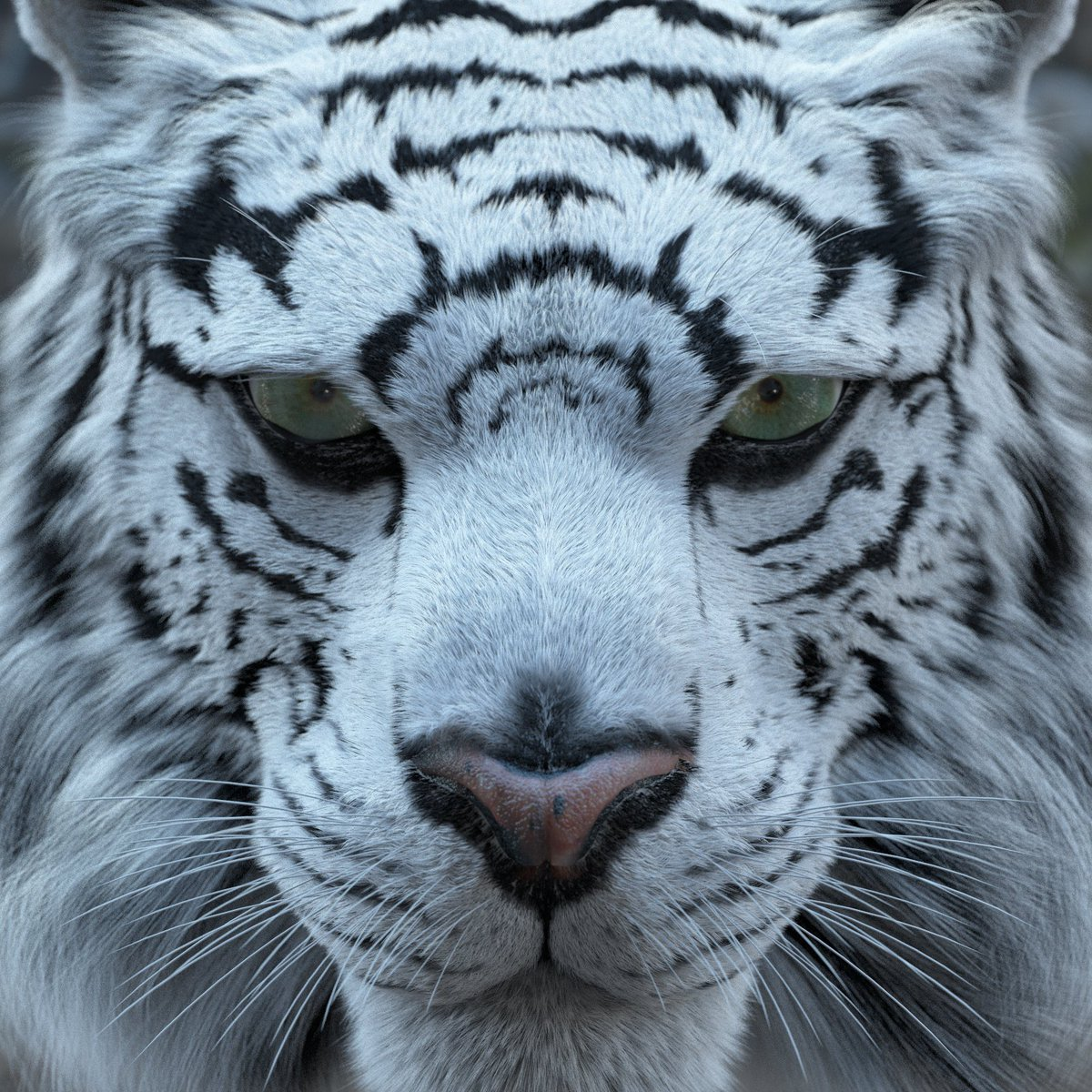 test Twitter Media - Lino Grandi's amazing tiger render showing the power of FiberFX in LightWave Next! https://t.co/ZKigaxKuXH