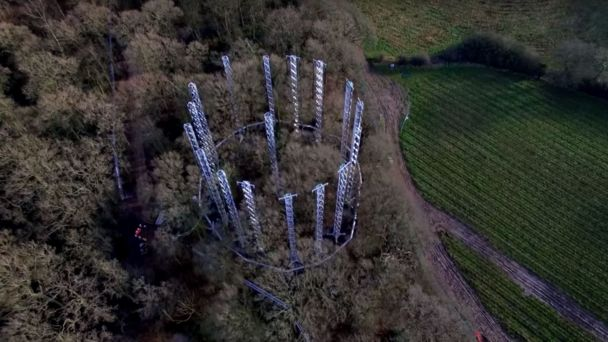 CO2 pumped into UK forest in climate change test