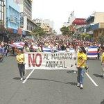 Costa Rica pone en vigor ley contra maltrato animal en clima de fiesta - Diario Co Latino