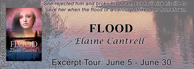 Flood by Elaine Cantrell ❤️ Book Tour & Gift Card Giveaway ❤️ (Romantic Suspense)