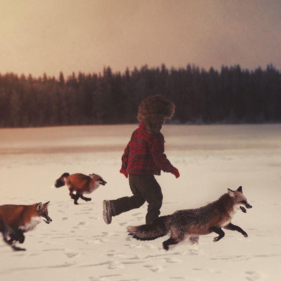 fox, fox, kid, fox...  https://t.co/dzAnD93sla https://t.co/8v3Dm7QgnD