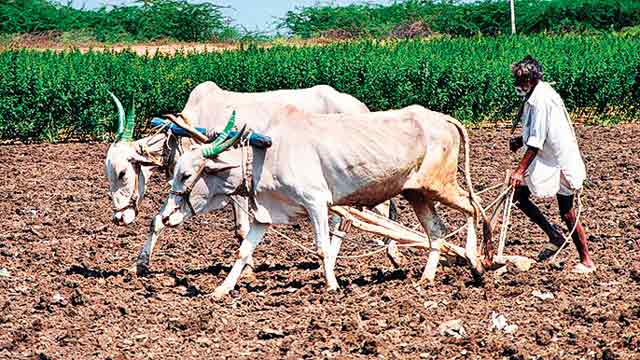 Union Cabinet approves sops on short-term crop loan to farmers