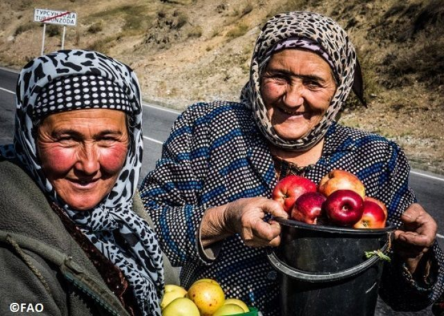 Investing in #agriculture transforms lives by reducing hunger & poverty https://t.co/5PqV3NuE3m #zerohunger https://t.co/vtCLnPIl7z