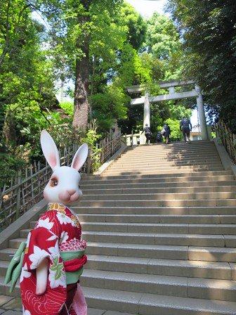 本日は渋谷氷川神社へ。アニメ映画「バケモノの子」にも出てきた神社なのじゃ。御朱印も頂きました♪ 詳細はブログに!