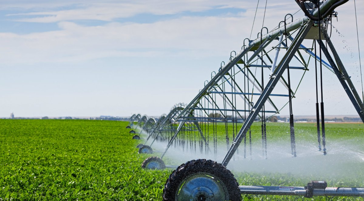 Agriculture and the 'Internet of Things': how it will change in Australia