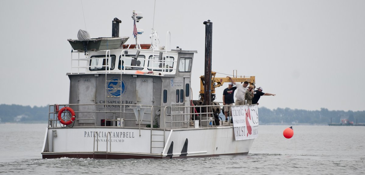 Conservation groups to expand Tilghman Island reef