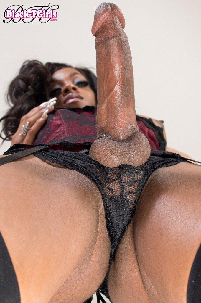 big butt black shemale № 72276