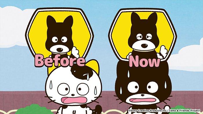 アニメ タマ&フレンズ~うちのタマ知りませんか?~ 今日のお話は「太っちょクロ」公園に集まったタマとフレンズたち。丸々と