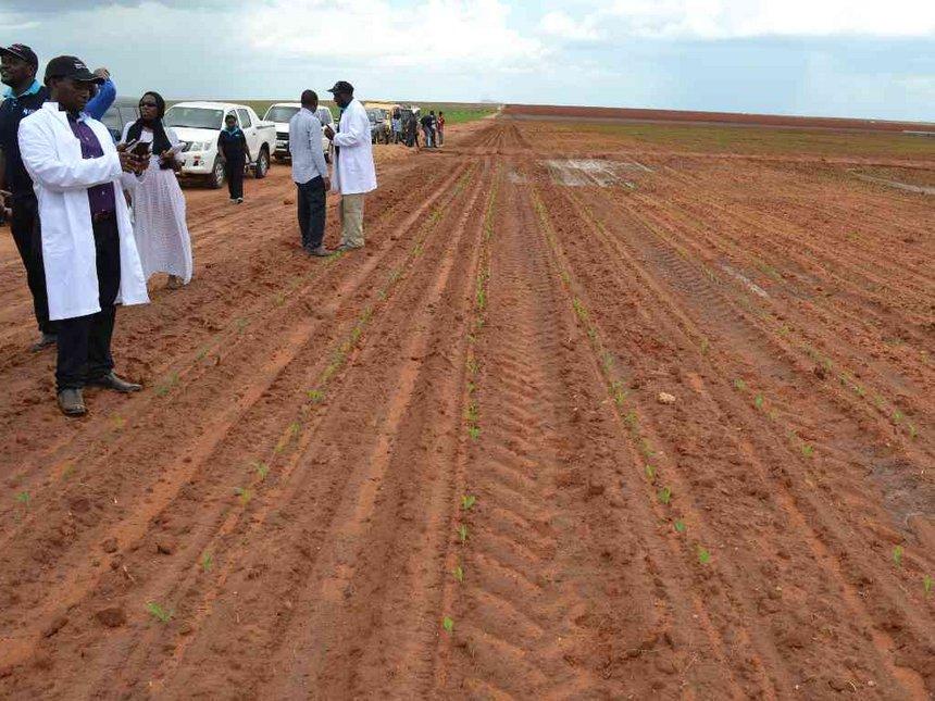 Kilifi should own Galana irrigation project - Kingi