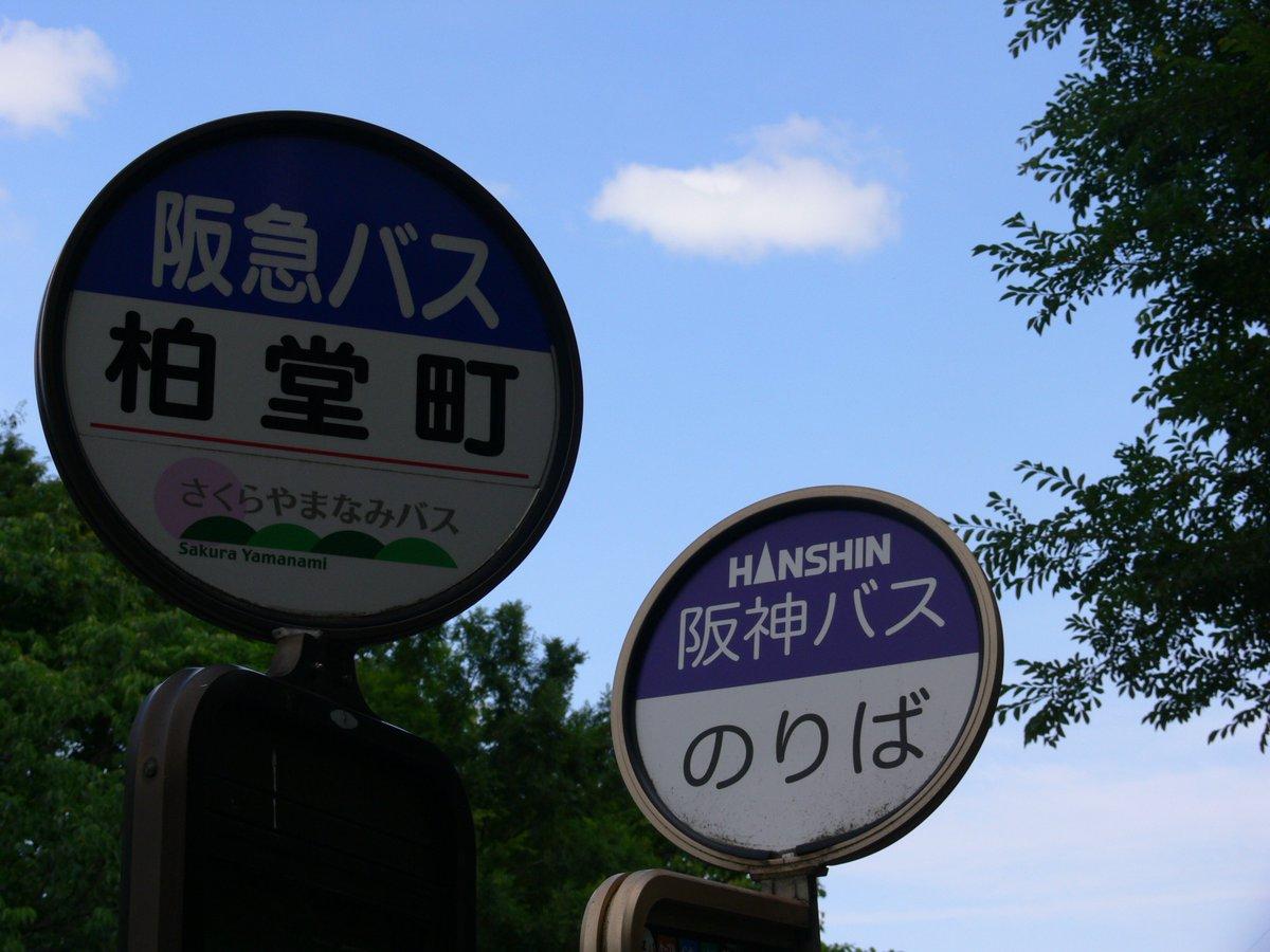 本日の2枚 バス停留所編🚏第四十九回目は、阪急バス・阪神バス・さくらやまなみバス柏堂町停留所です涼宮ハルヒの憂鬱・涼宮ハ