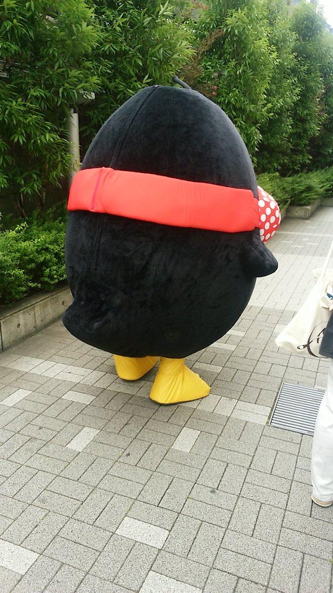 キューイチローの後ろ姿 #kimimachi