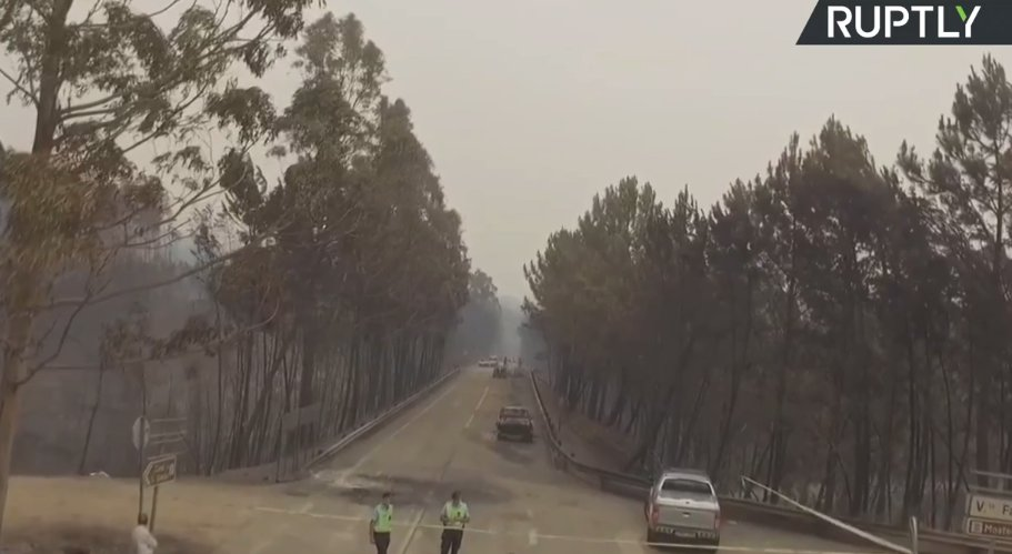 LIVE: Drone view from Portugal following deadly forest fires