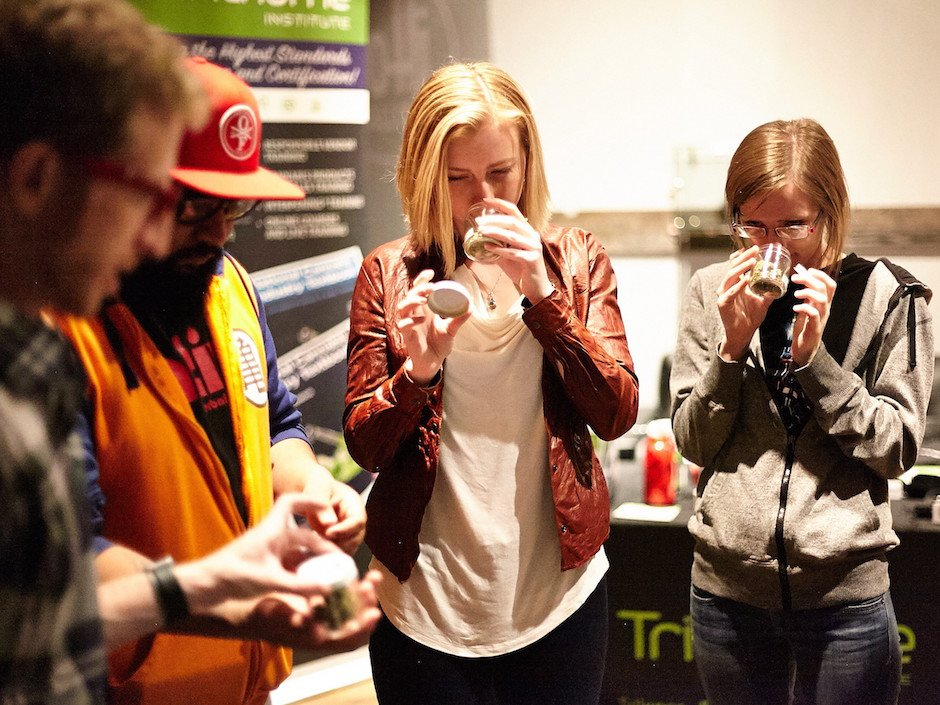 High school? Colorado outfit offers niche program for marijuana sommeliers