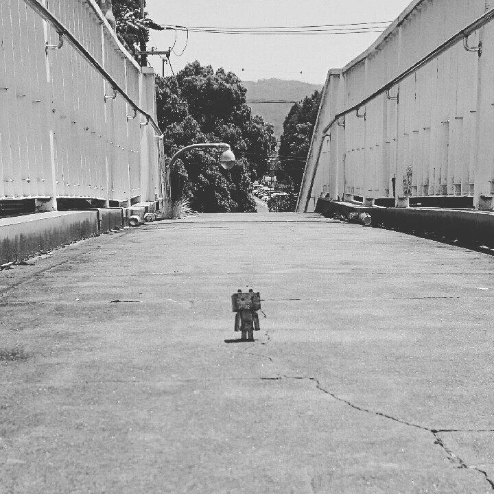 歩道橋#ダンボー#にゃんぼー#ニャンボー#りぺにゃん#danbo#nyanbo