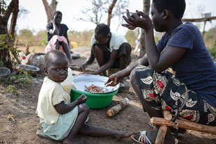 65.6 million people forced to flee