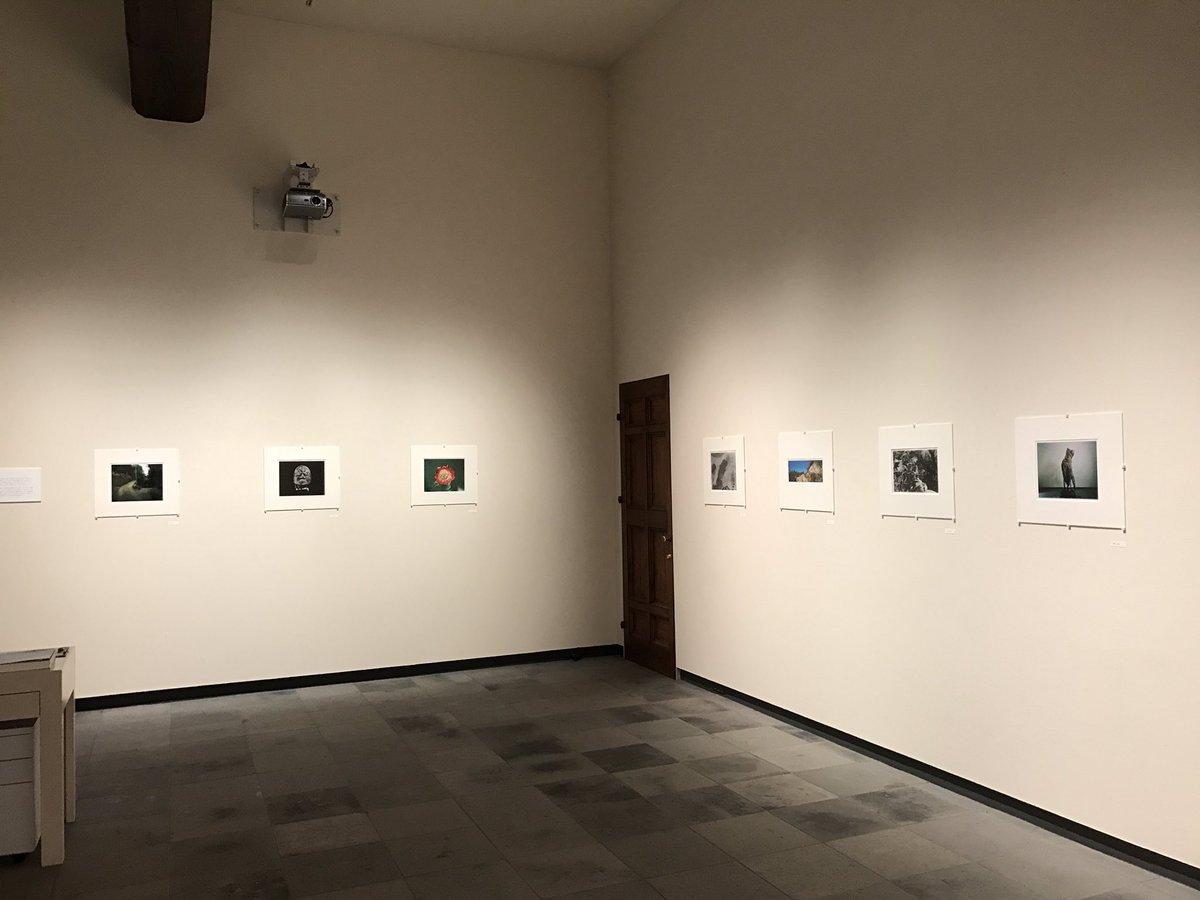 BISHIN JUMONJI GALLERY 「常ならむ working print 展」5回目の展示替え完了。第6期目