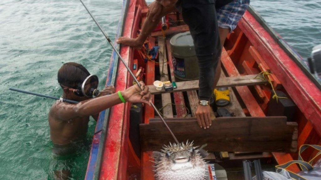 Dynamite fishing, drugs, threaten Myanmar's 'sea gypsies'