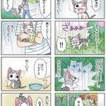 8コママンガ【今日のこねこのチー】チー、よろこぶ33DCGアニメ『こねこのチー ポンポンらー大冒険』がマンガになった!★