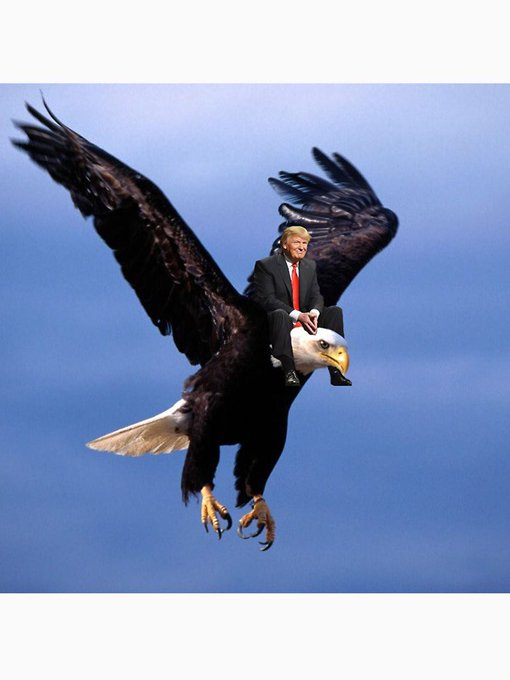 It don\t get much more American than Donald Trump spurring a bald eagle for 90  Happy Birthday America