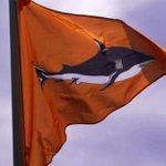 Shark attacks threaten Reunion Island tourist trade