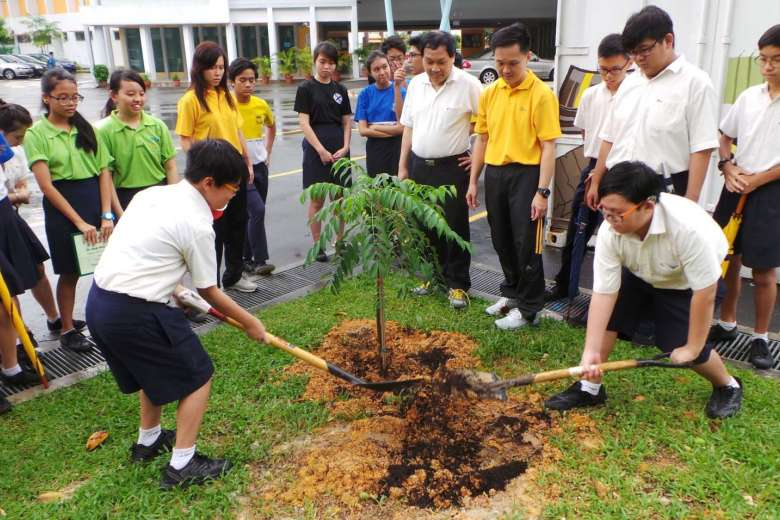 More students to get a chance to plan the greening of their own schools