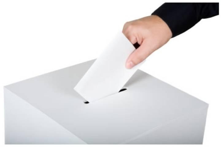 Edmonton public school trustees vote 'yes' for youth voting